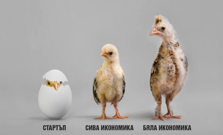 Сивата икономика в България
